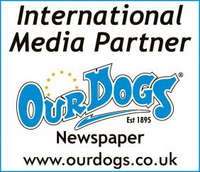 international media partner logo
